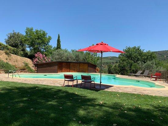 Castelmuzio, Italia: Pool area - with shaded areas in a beautiful and peaceful setting.
