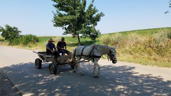 Moldavia: moldova trip