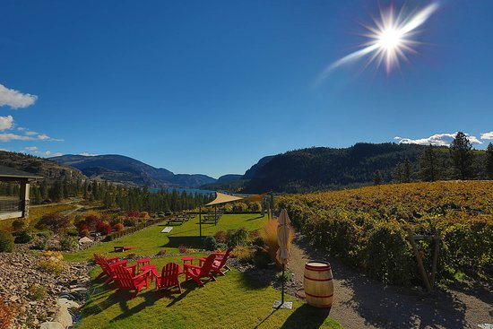 Okanagan Falls, Kanada: Come and enjoy the view with a bottle of your favorite Noble Ridge wine.