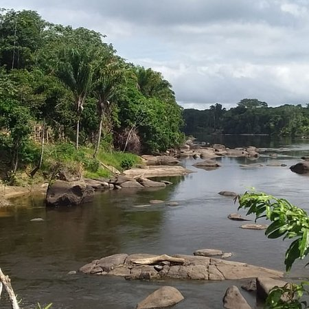 Bottopassi, Suriname: Just a glimpse of what we as alafasi Botopasi lodge have to offer.
