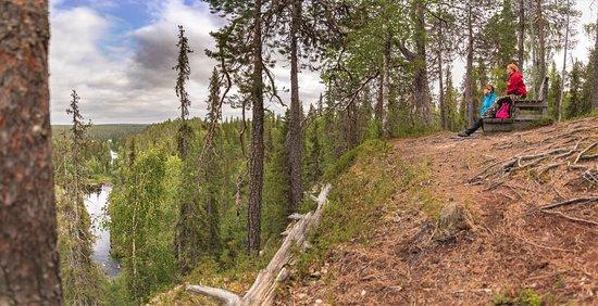 Oulanka National Park, ฟินแลนด์: Oulangan kanjoni, Oulangan kansallispuisto. Kuva: Heikki Sulander