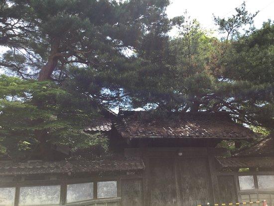 Ota Family Residence