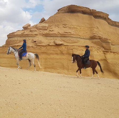 Мухафаза Эль-Файюм, Египет: Horseback riding with Princess Horse in Tunis Village Fayoum. An unique experience to ride along the lake and in the desert. Ahmed Etih is your guide and shows you the unspoiled nature from the horseback.