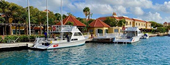 Dive boats at the marina