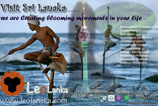 Dambadeniya, Шри-Ланка: Leo Lanka Leo Lanka is dedicated to offering our clients an infinite range of travel opportunities. Our set of travel experts offer superior, unsurpassable service, tailoring the holiday packages those are full of freedom to explore and enjoy your time to its fullest. Leo Lanka invites all types of travelers to explore and enjoy the wonders of Sri Lanka.  our mission is to offer the clients with responsible travel and eco-tours with creativity . Leo Lanka is obliged in maintaining sustainability