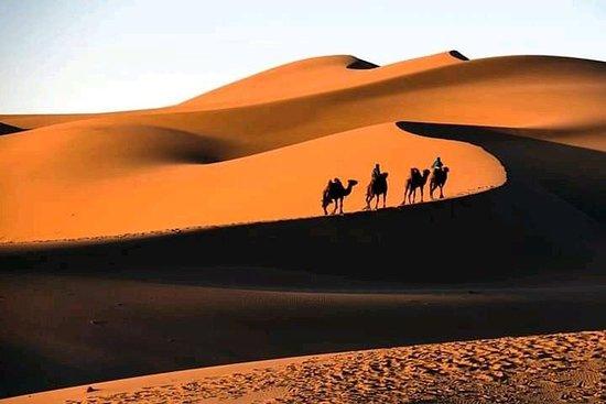 Desire Morocco Tours