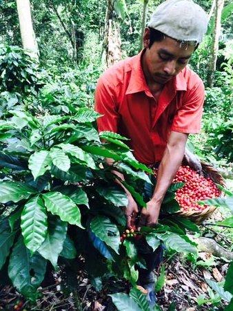San Ramon, Nicaragua: Fincas agroturisticas