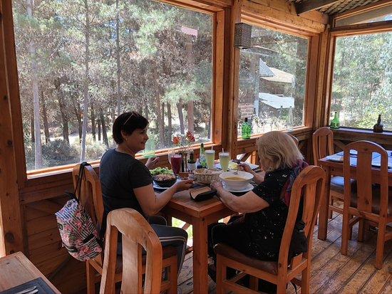 El Totoral, Чили: vista al bosque desde el comedor