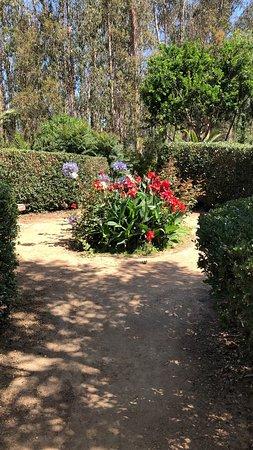 El Totoral, Чили: Jardín
