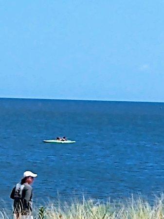 Frederica, DE: Delaware Bay