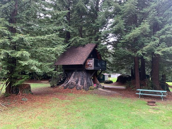 Scotia, Californie : Stafford Stump house