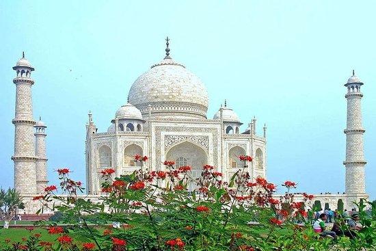 新德里的私人泰姬陵日出之旅和阿格拉一日游