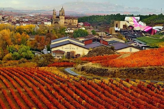Vitoria and the Rioja Wine Region صورة فوتوغرافية