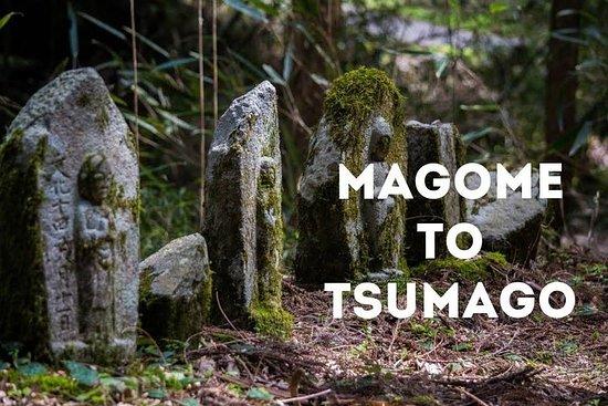 Magome & Tsumago Nakasendo Trail Day Hike with Nationally-Licensed...