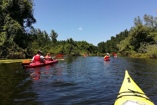 Belgrade Amazon Kayak Adventure