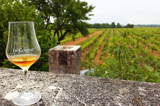 Privat dagstur fra Cognac: Vineyard and Craft Distilleries with...