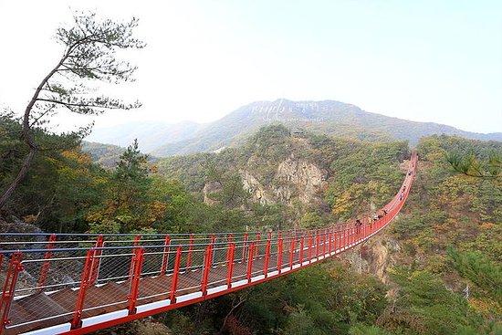 Private DMZ Peace Tour : N.Korea 3rd...