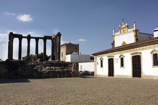 Excursión de medio día a Évora (8...