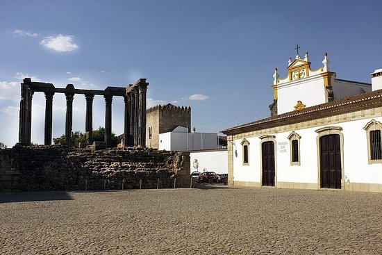 Excursión de medio día a Évora (3...