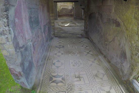 Herculaneum en lokale wijnproeverij ...