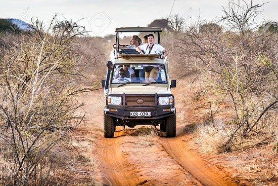 2 dagen Tsavo oost met 4x4 Safari Jeep