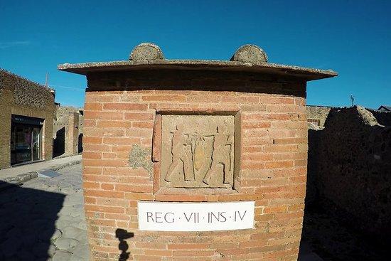 Pompeii, Herculaneum and Local wine...