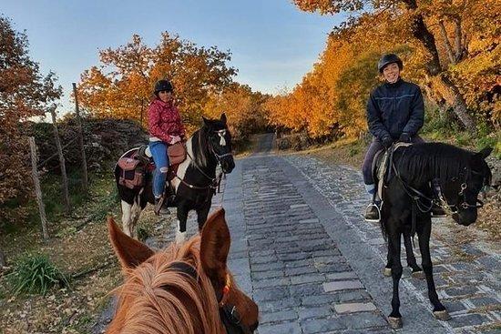 Passeio a cavalo em Etna 2 dias