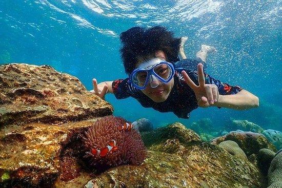 Bangkok nach Pattaya: Nemo Island & Big...