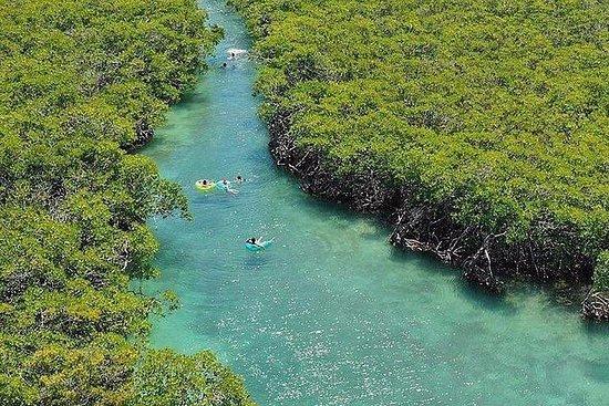Gita di un giorno in kayak sull'isola di Glligan