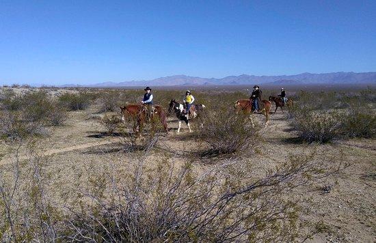 Yucca, AZ: Ranch borders BLM acreage for riding