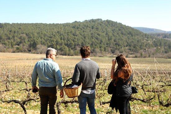 Foto de Vilafranca del Penedès