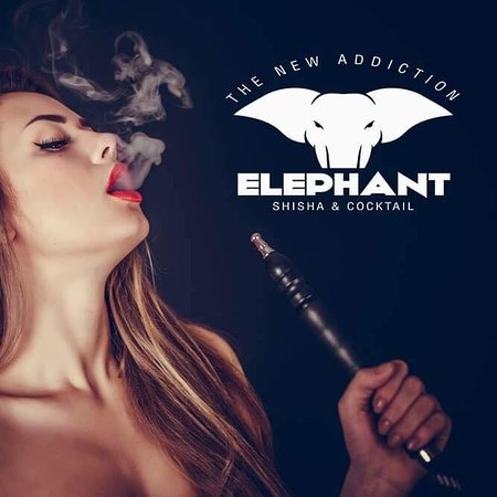 Elephant Shisha & Cocktail Bar