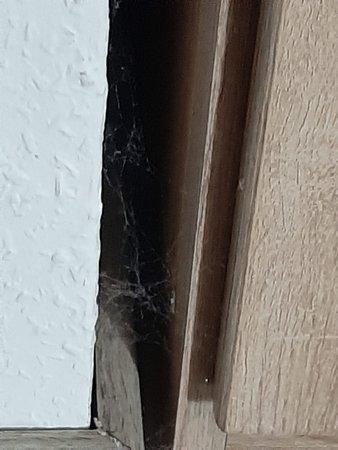 Bad Fallingbostel, Almanya: Die Spinnen neben dem Schrank haben mich bereits bei Ankunft begrüßt. Das springt einem doch ins Auge! Sieht man sofort, hätte man als Chefin das Zimmer selbst nochmal geprüft.  So sah es an vielen Stellen aus.............