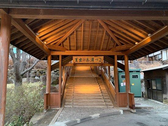 Natsumushi no Oyukko