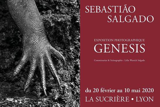 Expo GENESIS