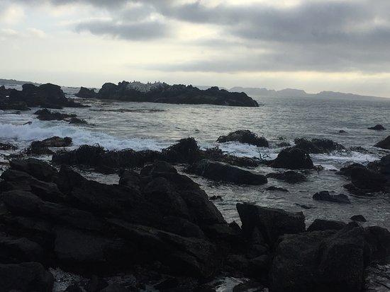 Фотография Punta Choros
