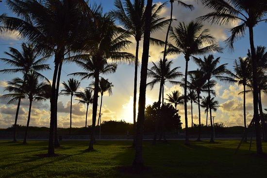 lummus park beach (miami beach) - 2020 all you need to