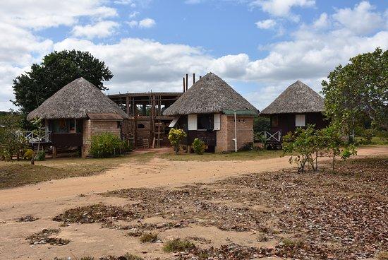 Surama Village, Гайяна: Construction site and round huts
