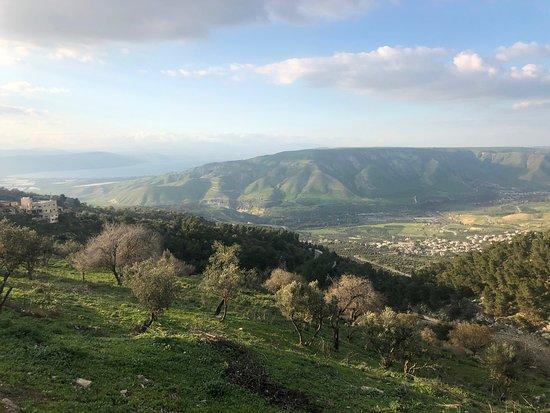 Umm Qais, Jordanie: Vue des champs d'Olivier, du lac de Tibériade et du plateau du Golan.