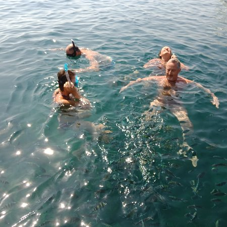Bom Island