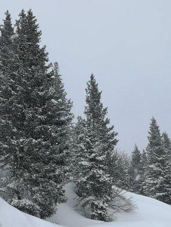 Wonderful Skiing in Bad Hofgastein