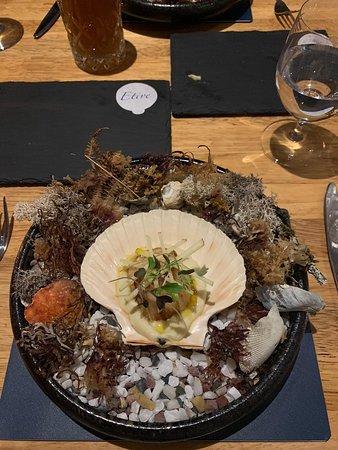 Etive Restaurant: Hand Dived Loch Fyne Scallop, Cauliflower, Apple and Truffle Oil