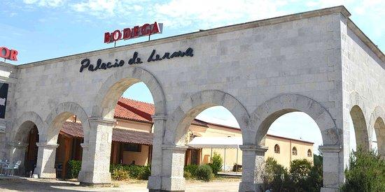 Bodega Palacio de Lerma