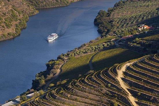 Day Cruise from Porto to Pinhão with...