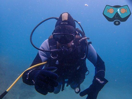 Bahia De Casares, Spain: Diving with ScubaCourse