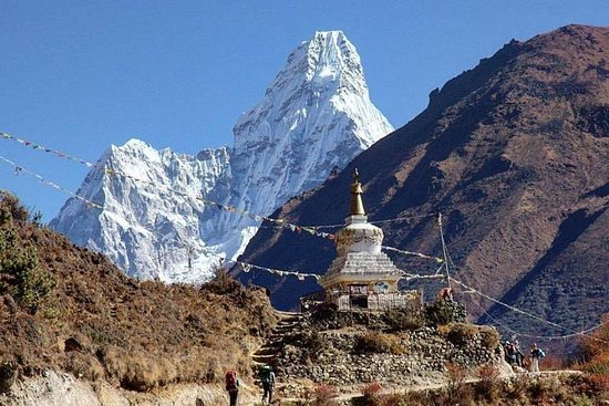 Travel to Himalayas Pvt Ltd Nepal; The best operator