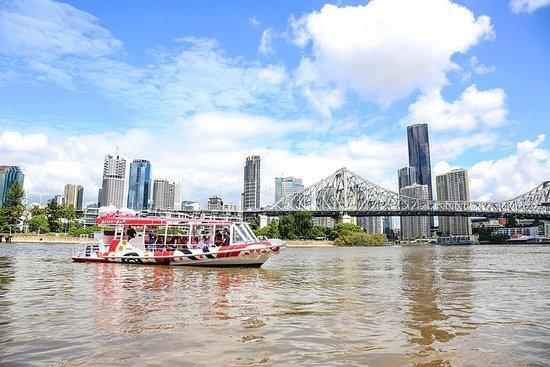 Heldags ø-oplevelsescruise fra Brisbane inklusive frokost