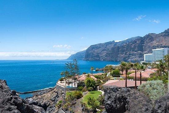 Visita completa a la isla de Tenerife