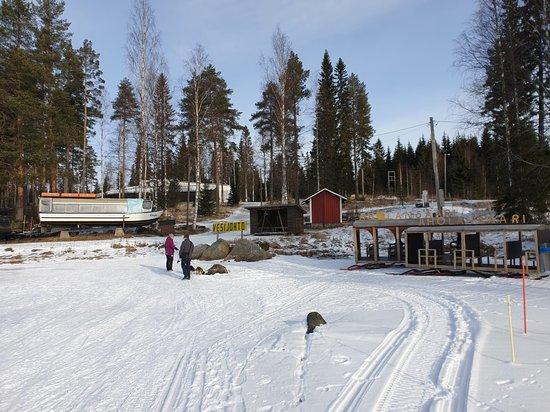 Aholansaari