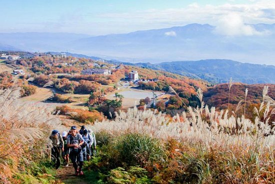 5 netter Shine-Etsu Trail Hike - Nozawa Onsen | Japan